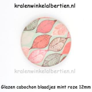 Cabochons glas sieraden maken