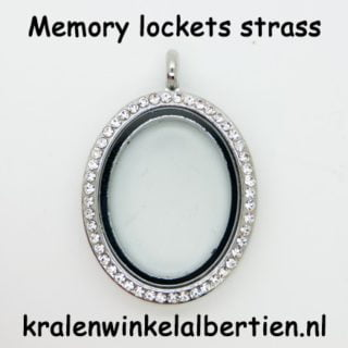 Ovalen medaillon strass glas magneet sluiting floating charms