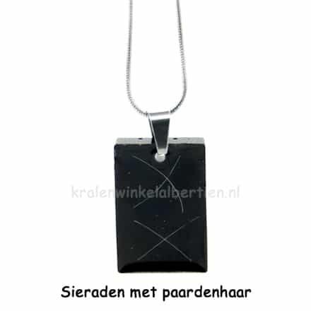 Paardenhaar hangers zwart voor wit haar stainless steel