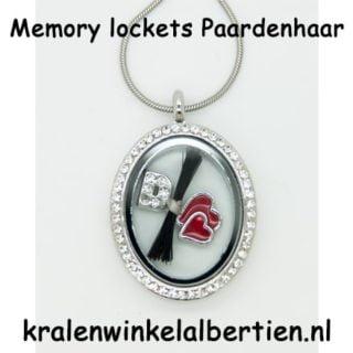 Memorie medaillon zelf maken paardenhaar sieraden charms letter