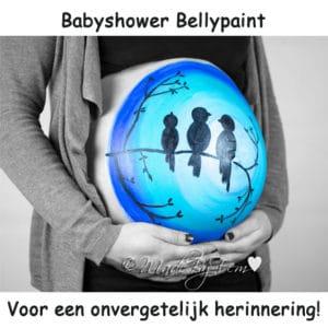 Baby feestje buikschildering fotoshoot friesland