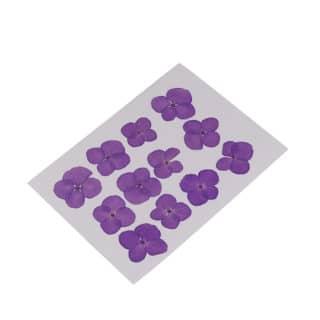 Paarse gedroogde bloemetjes resin art hars sieraden zelf maken