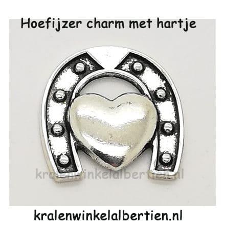 Hoefijzertje charm memory lockets zilver hartje