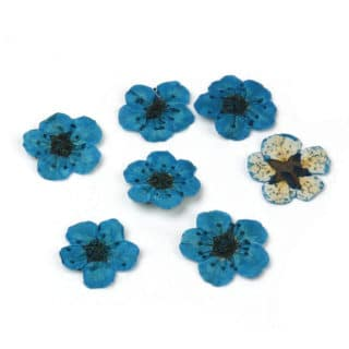 Gedroogde bloemen sieraden maken hars epoxy