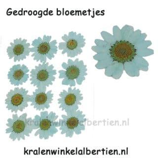 Gedroogde bloemetjes mint groen sieraden maken