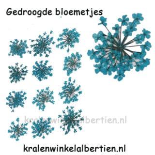 Gedroogde bloem blauw sieraden maken resin art epoxy hars