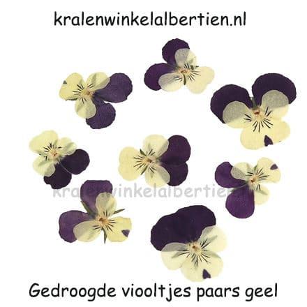 Gedroogd bloemetje viooltje geel paars sieraden maken resin epoxy