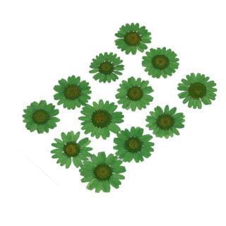 Gedroogde chrysanten bloemen hars sieraden zelf maken zomer trends