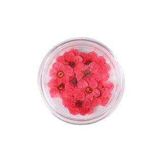 Droogbloemetjes rood klein giethars