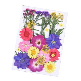Gedroogde bloemen resin art sieraden maken mix